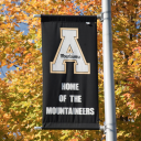 Flag in fall leaves at App State